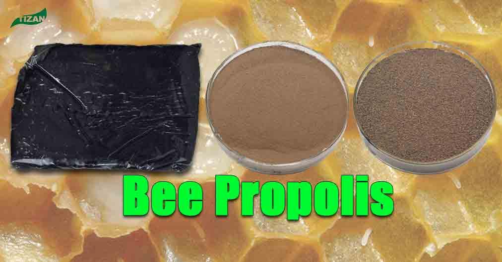 Bee Propolis Block Propolis Extract Powder