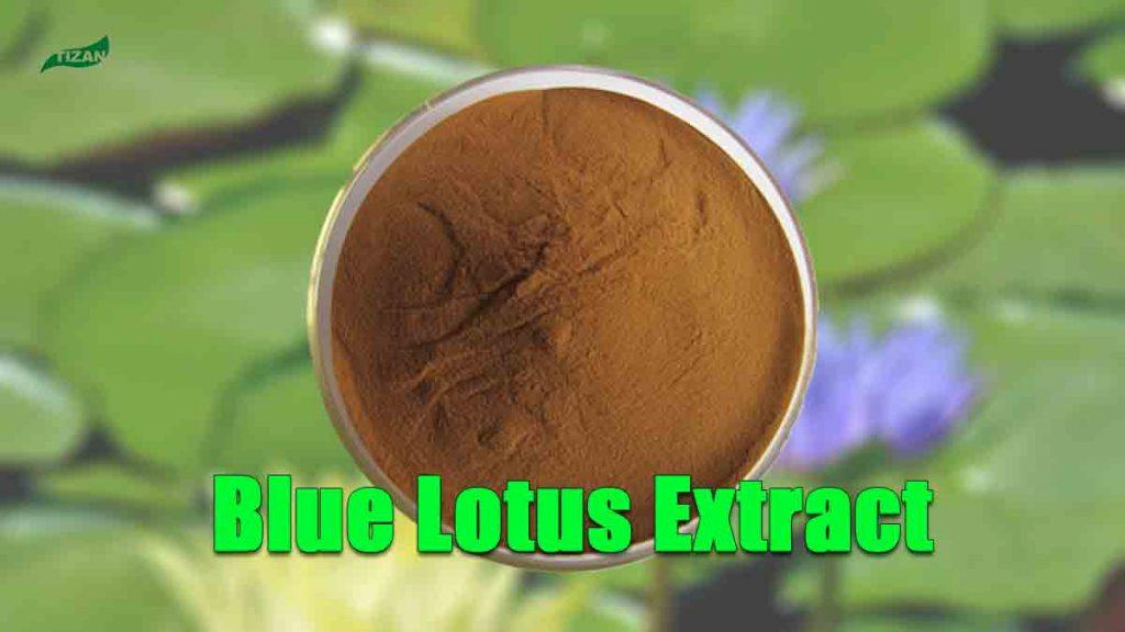 Blue Lotus Extract Powder Nymphaea Caerulea Extract Powder