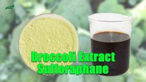 Broccoli Extract Sulforaphane Powder, Sulforaphane Liquid