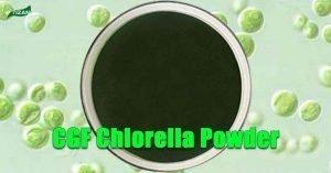 CGF Chlorella Powder