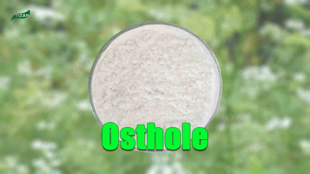 Cnidium Monnieri Extract Cnidium Osthole Powder
