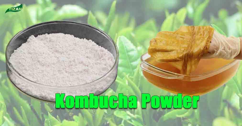 Kombucha Powder