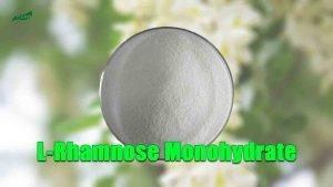 L-Rhamnose Monohydrate Powder Sophora Japonica Extract