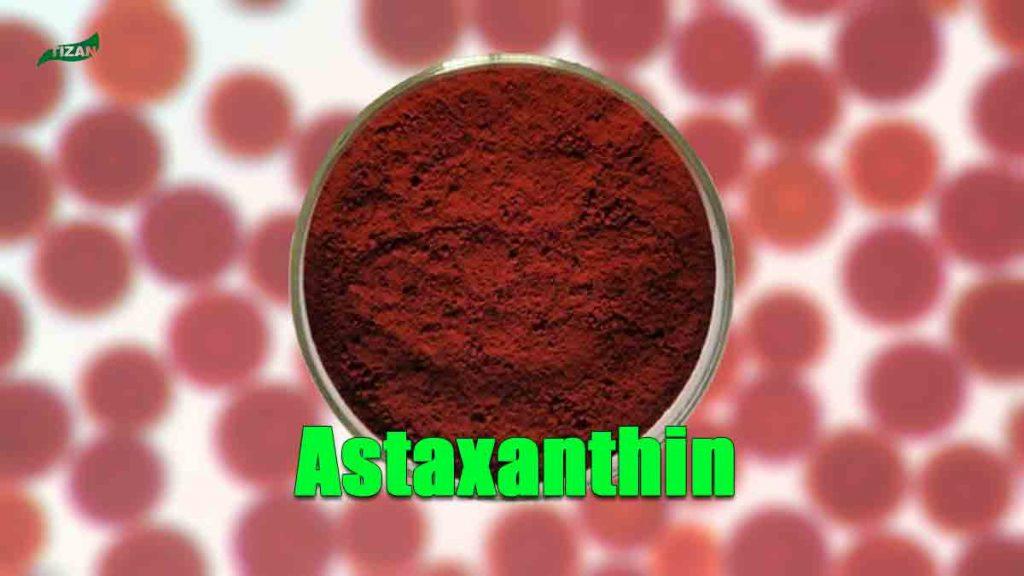 Natural Astaxanthin Powder