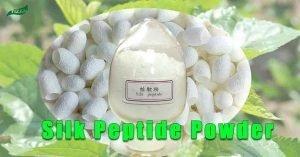 Silk Peptide Powder