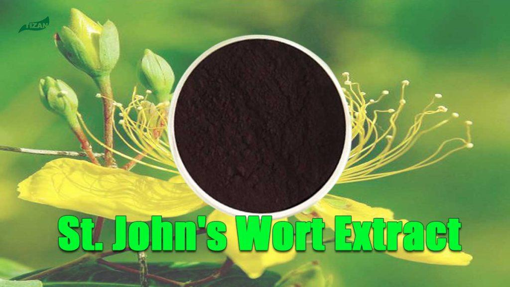 St Johns Wort Extract 0.3 Hypericin Powder