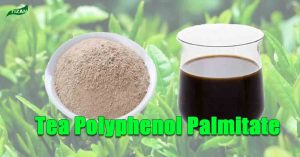 Tea Polyphenol Palmitate