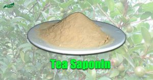 Tea Saponin