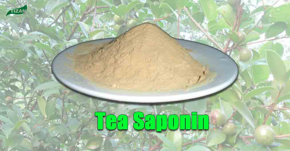 Tea-Saponin