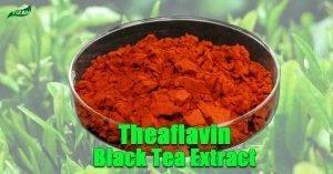 Theaflavin Powder
