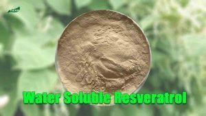 Water-soluble Resveratrol Powder