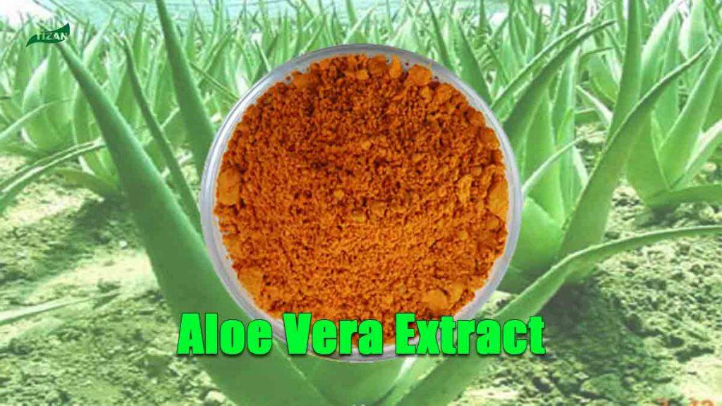 Aloe Vera Extract Aloe Emodin Aloin