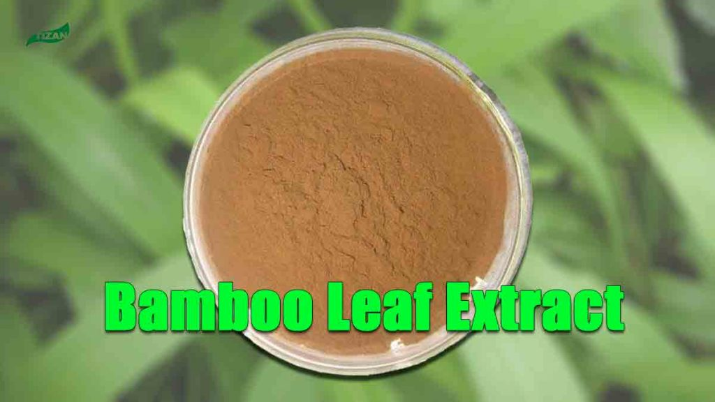 Bamboo Extract Powder Flavones Bamboo Leaf Extract Powder