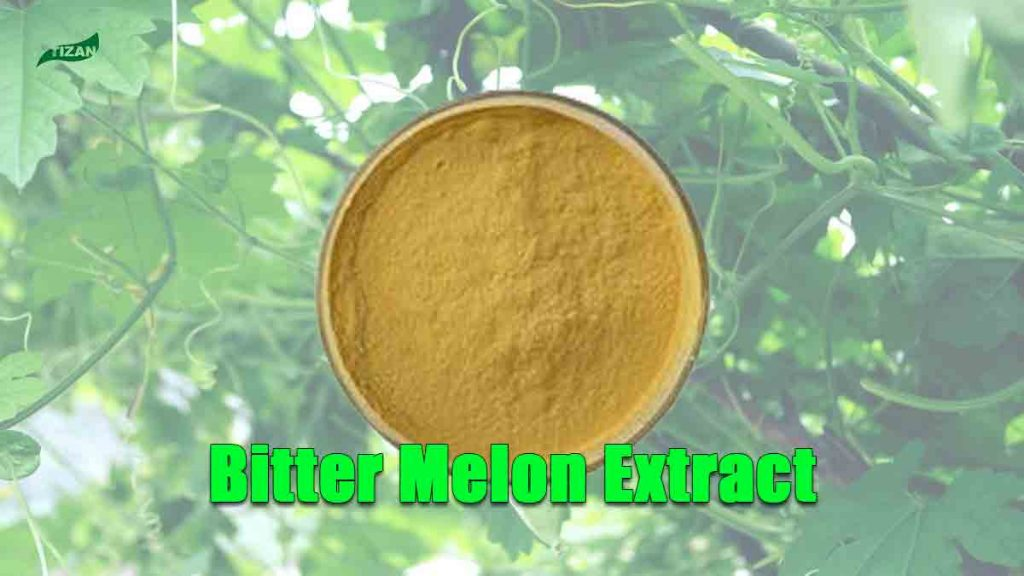 Bitter Melon Extract Charantin Powder