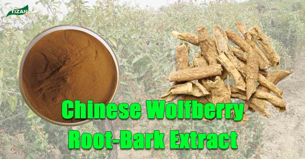 Chinese Wolfberry Root-Bark Extract