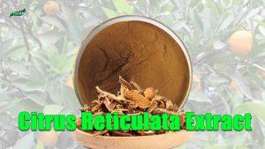 Citrus Reticulata Extract Powder