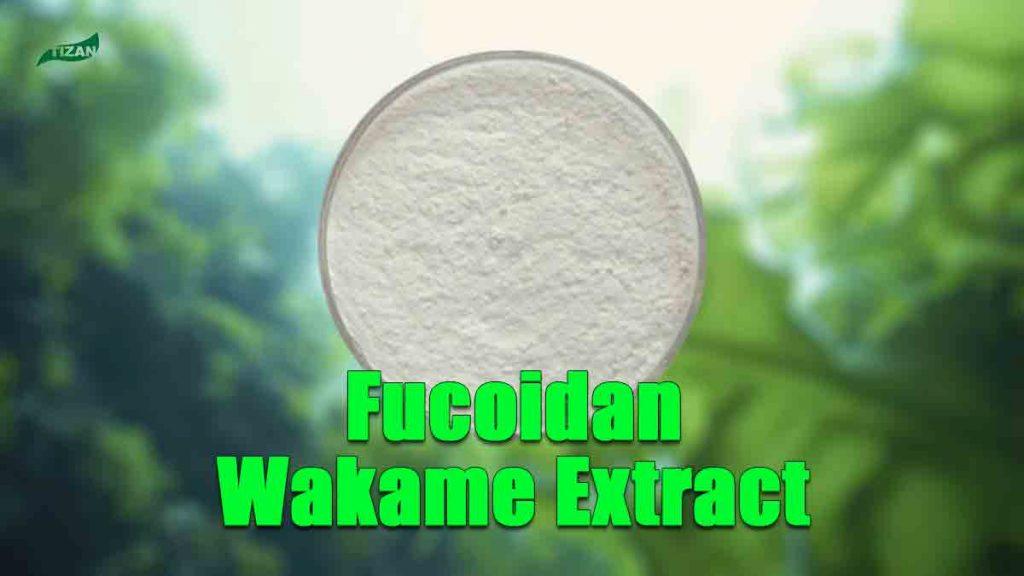 Fucoidan Extract Undaria Pinnatifida Extract Wakame Extract