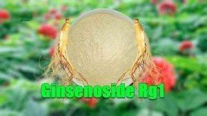 Ginsenoside Rg1 Powder Asian Ginseng Extract