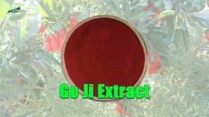 Go Ji Extract Goji Polysaccharides