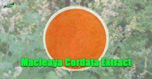 Macleaya Cordata Extract Sanguinarine Sulfate Powder