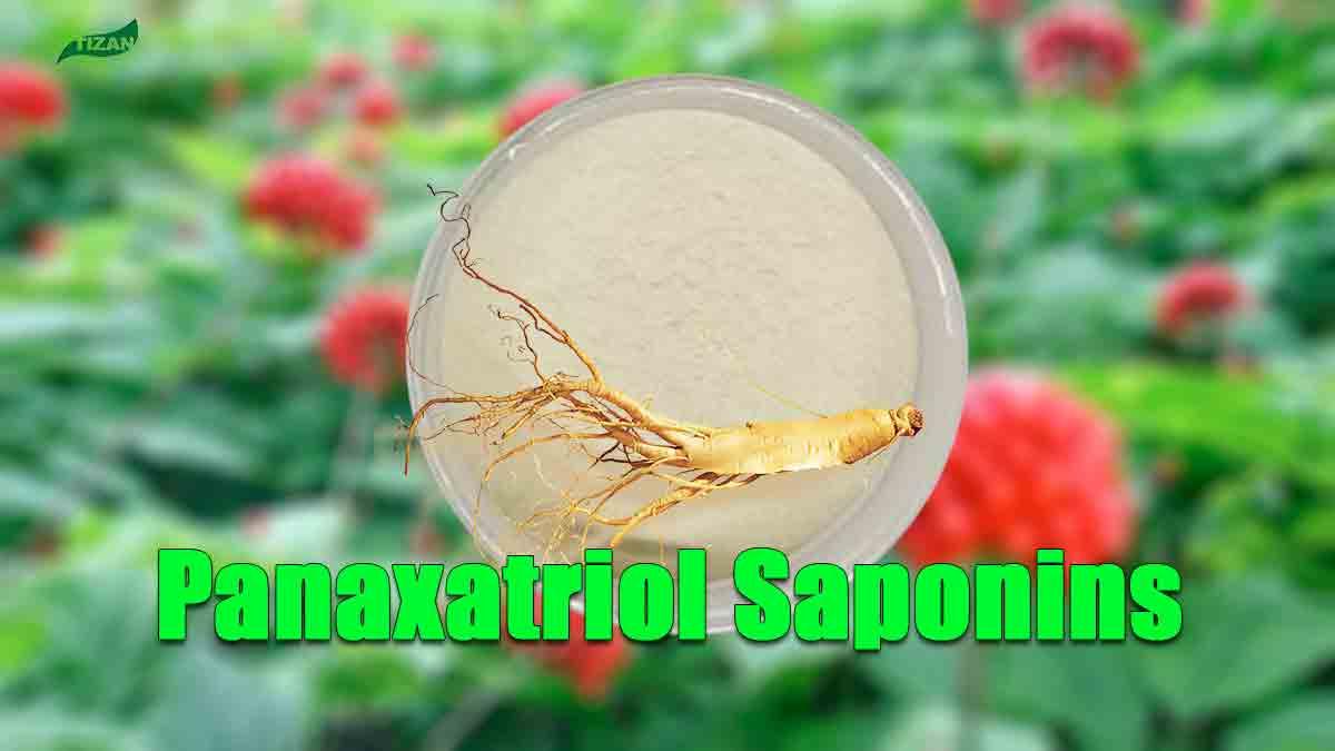 Panaxatriol Saponins Powder