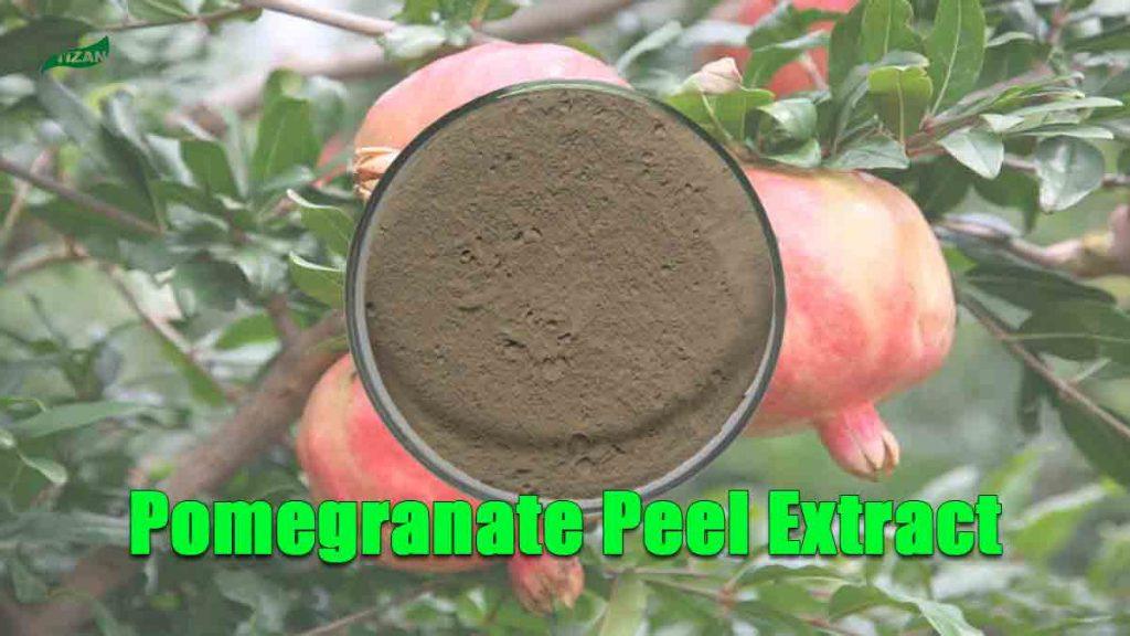 Pomegranate Peel Extract Ellagic Acid Polyphenols Punicalagin