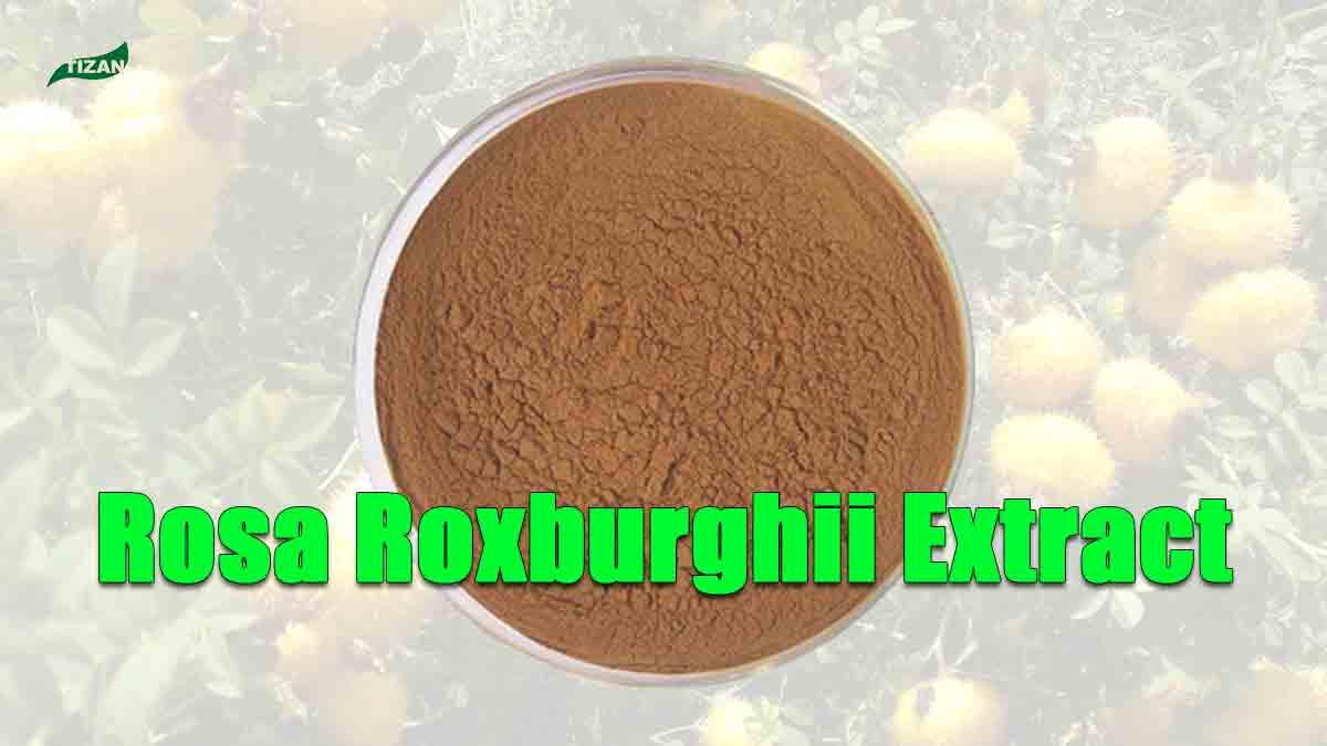 Rosa Roxburghii Extract Powder