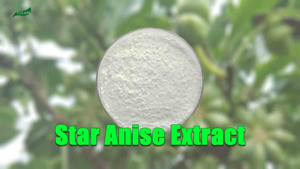 Star Anise Extract Powder Shikimic Acid