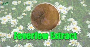 Feverfew Extract Parthenolide | Tanacetum Parthenium Extract