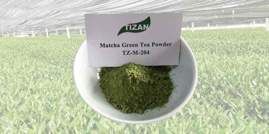 Matcha-Green-Tea-Powder-TZ-M-204