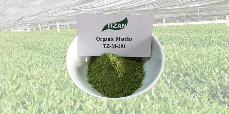 Organic-Matcha-Green-Tea-Powder-TZ-M-201