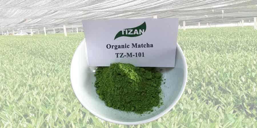 Organic-Matcha-TZ-M-101
