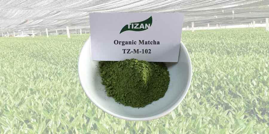 Organic Matcha Powder TZ-M-102-S