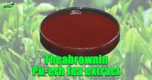 Theabrownin Pu-erh tea extract