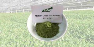 culinary grade Matcha Green Tea Powder TZ-M-203
